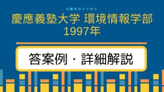 慶應義塾大学 環境情報学部1997年 小論文